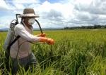 FarmersandPesticides_20130909134718