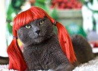redheads_49