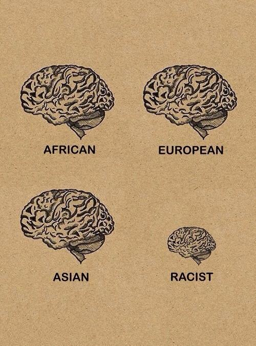 racism (8)