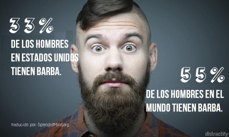 barba7